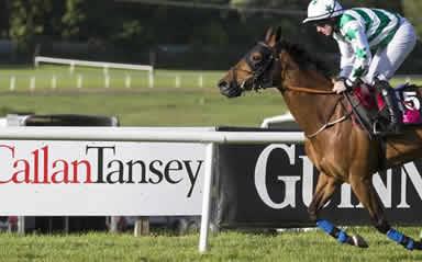 A great evening out for Callan Tansey at Sligo Races!