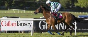 Callan Tansey sponsorship of Sligo Races